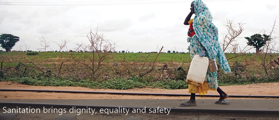 Sustainable Sanitation: The Drive to 2015